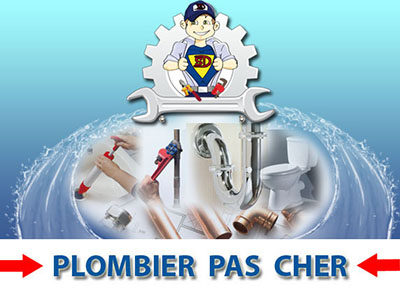 Canalisation Bouchée Courtomer 77390